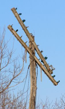 Old Railroad Telegraph Pole Royalty Free Stock Photos