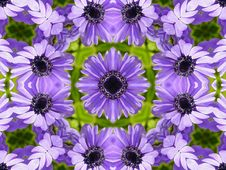 Free Flower Pattern Quilt Stock Images - 627724