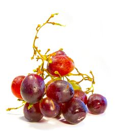 Fresh Berrys Royalty Free Stock Image