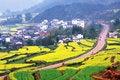 Free Chinese Spring Stock Photo - 6206380