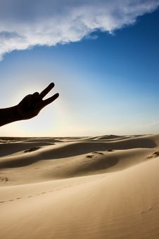 Free Peace In The Desert Royalty Free Stock Image - 6200676