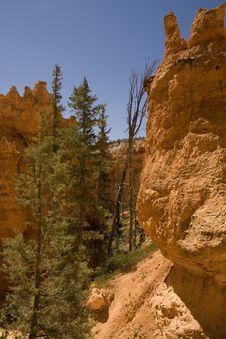 Free Bryce Canyon Royalty Free Stock Photos - 6201578