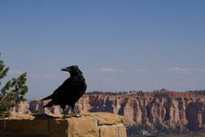 Free Bryce Canyon Royalty Free Stock Photography - 6201617