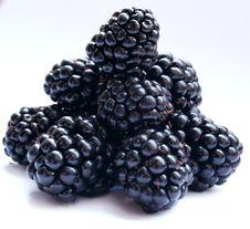 Free Blackberry Stock Photography - 6202212