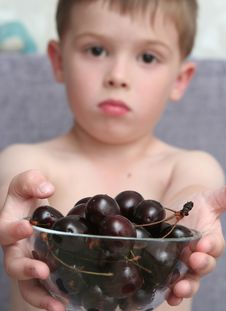 The Boy Holds A Bowl With Berries In Hands