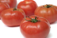 Free A Lot Of Fresh Juicy A Tomato Stock Photo - 6202630