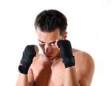 Free The Young Boxer On A White Background Royalty Free Stock Photo - 6202925
