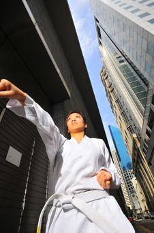 Free Corporate Karate 8 Royalty Free Stock Image - 6203766