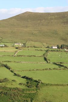 Free Irish Farmland Stock Photos - 6204783