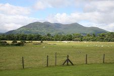 Free Irish Farmland Stock Photography - 6205582