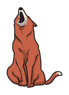 Free Fox Howling Royalty Free Stock Photos - 6207628