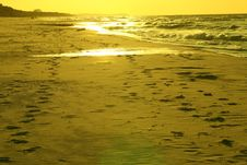 Free Footprints On The Beach Royalty Free Stock Image - 6210106