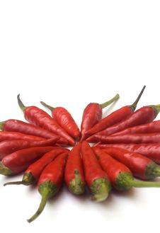 Free Chili  Peppers Against White Stock Photo - 6210600