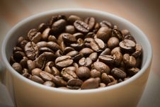 Cup With Freshly Roasted Coffee Beans Stock Images