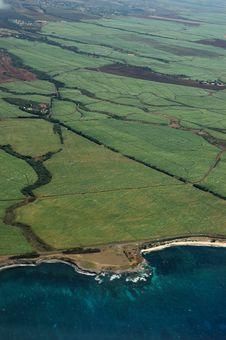 Free Green Farmland Fields Stock Image - 6212001
