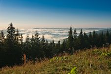 Free Over The Clouds Royalty Free Stock Images - 6213269