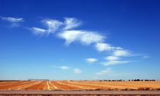 Free Golden Field, Blue Sky And Clouds Royalty Free Stock Photos - 6216778