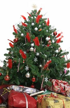 Free Beautiful Christmas Tree Isolated Stock Photography - 6216892