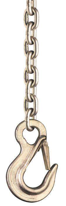 Free Chain And Hook 2 Royalty Free Stock Image - 6217536