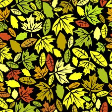 Free Autumn Leaf Seamless On Black Royalty Free Stock Images - 6217949