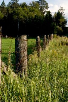 Free Old Wire Fence Stock Images - 6218264
