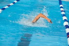 Free Swimmer Royalty Free Stock Photos - 6218648