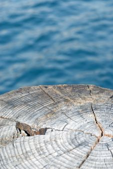 Free Wood And Water Stock Photos - 6219073