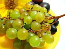 Free Grape Stock Photos - 6219933