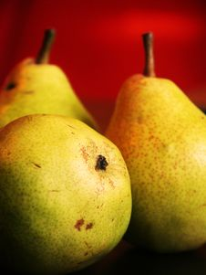 Free Pears Stock Image - 6221221