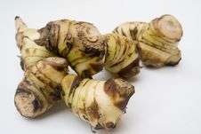 Free Galangal Root Royalty Free Stock Photo - 6221935