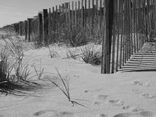 Free Beach Dune Stock Images - 6222104