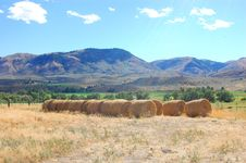 Free Hay Bales In Eastern Oregon Stock Images - 6224084