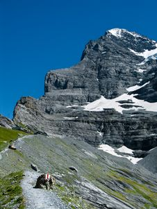 Eiger Ridge In Switzerland Stock Photo