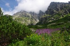Free High Tatras Stock Photos - 6225803