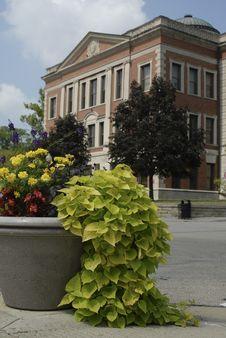 Free Street Corner Planting Stock Images - 6226794