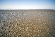 Free Sandy Ocean Floor Royalty Free Stock Images - 6227189