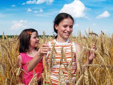 Free Happy Girls On A Field Royalty Free Stock Image - 6228146