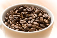 Cup With Freshly Roasted Coffee Beans Royalty Free Stock Photos