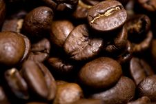 Free Roasted Coffee Beans Stock Photos - 6228393