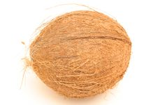 Free Whole Coconut On Top Stock Photo - 6228430