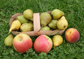 Free Pears And A Peach With Apples Royalty Free Stock Photo - 6231425