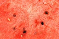Free Watermelon Texture. Royalty Free Stock Photos - 6230048