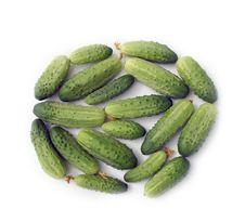 Free Cucumbers Stock Photo - 6231310