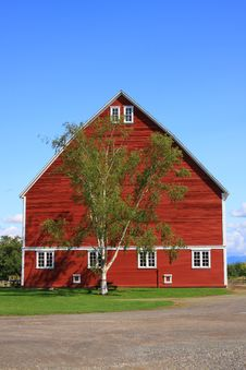 Free Red Barn With Tree Royalty Free Stock Images - 6231519