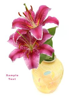 Free Lily In A Yellow Vase Stock Photography - 6231572