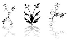 Free Floral Background  - Vector Elements Royalty Free Stock Photos - 6233918