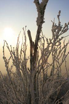 Free Winter Sunset, No.2 Stock Image - 6236141