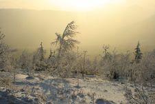 Free Winter Sunset, No.3 Stock Photo - 6236150