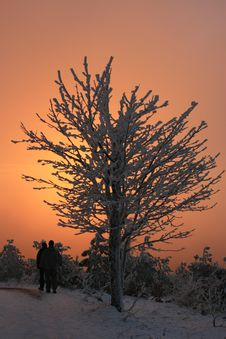 Free Winter Sunset, No.6 Stock Photos - 6236443