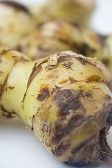 Free Galangal Root Stock Photo - 6236650